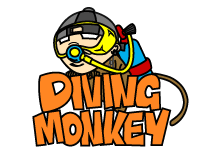 DIVING MONKEY CENTER
